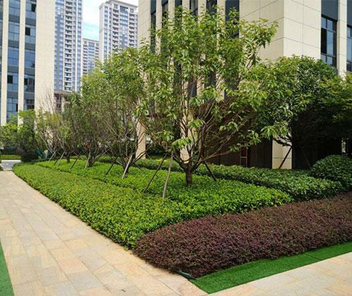 景观园林绿化