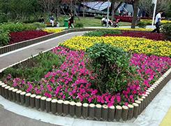 江西园林景观设计