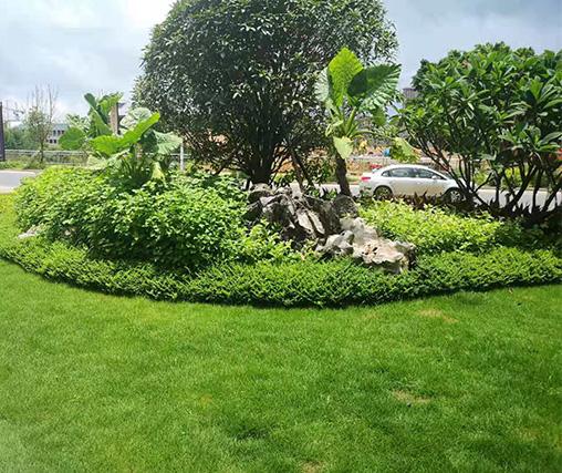 赣州园林绿化